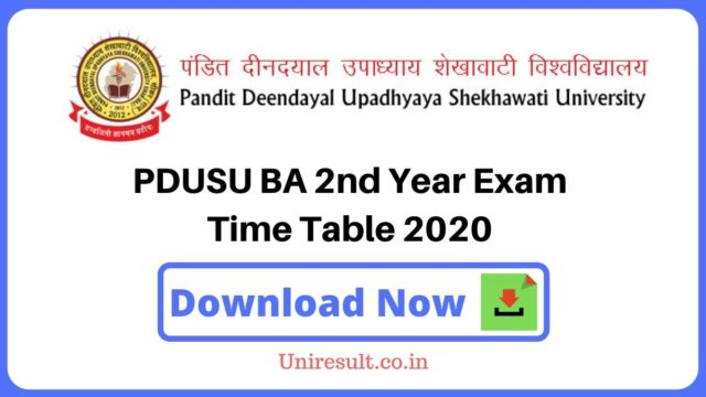 PDUSU BA second Year Exam Time Table 2020