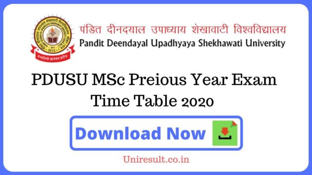 PDUSU MScPreious Year Exam Time Table 2020