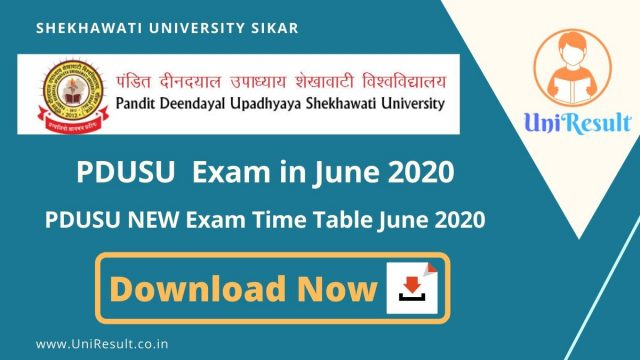 PDUSU NEW Exam Time Table June 2020