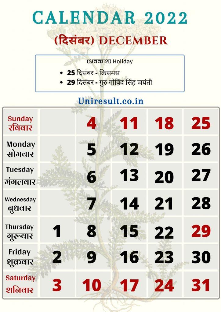 Rajasthan Government Holiday calendar December 2022