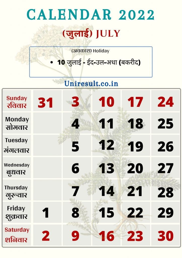 Rajasthan Government Holiday calendar July 2022