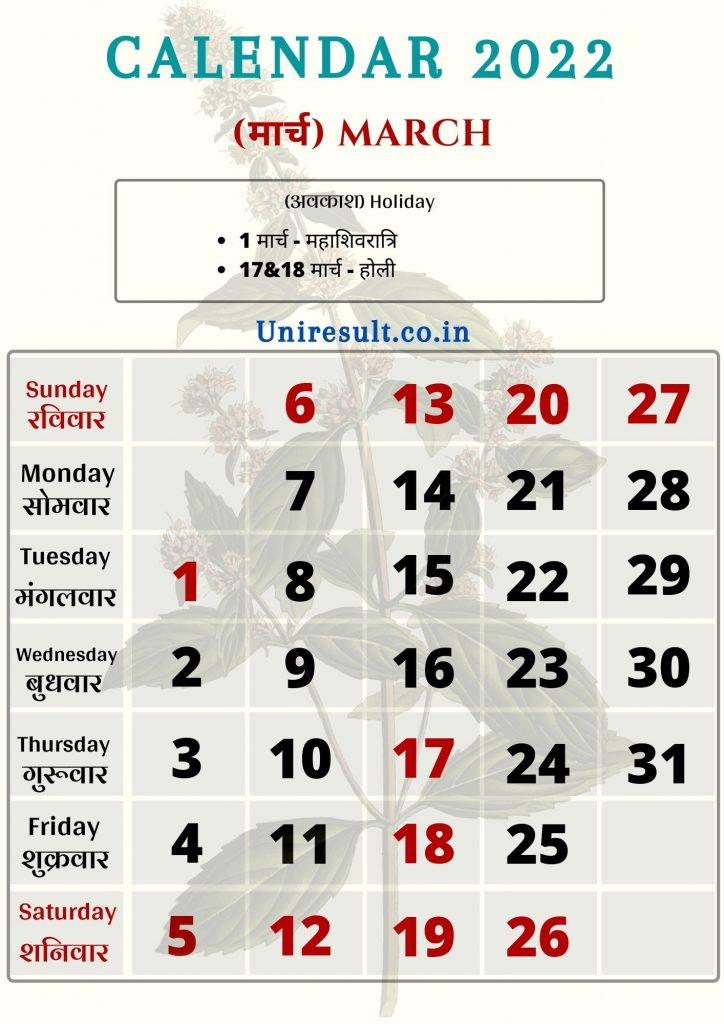 Rajasthan Government Holiday calendar March 2022